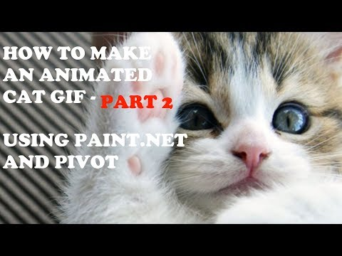 How To Make An Animated Gif - Part 2 (Using Paint.net and Pi