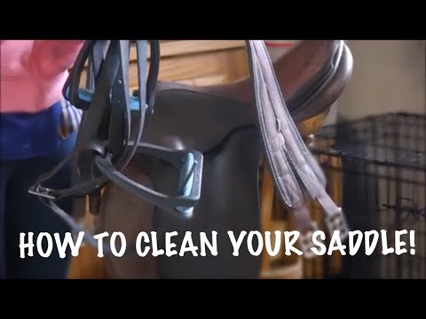 How To   Clean Your Saddle