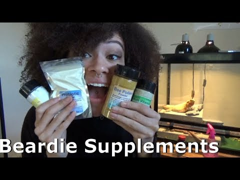 Needed Bearded Dragon Supplements