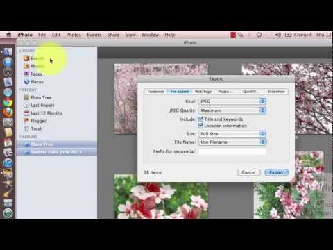 How to export photos from iPhoto (handy for burning to CD)