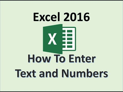 Excel 2016   Enter Text and Numbers