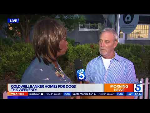 """Coldwell Banker, Shelters Join Forces for National """"Homes for Dogs"""" Adoption Weekend Sept 9-10"""