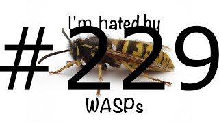 Download #229 WASPs hate me! Video