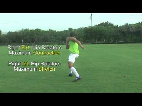 external and internal hip rotator muscles for soccer running and kicking