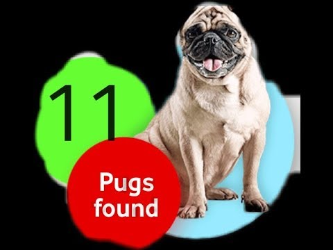 Offer Vodafone Hidden Pug Avail To Win iphone tips How To Find