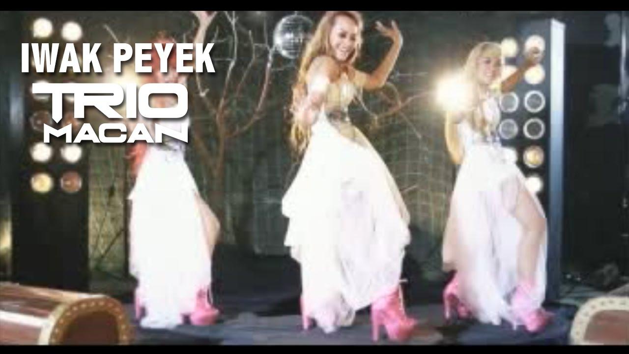 Download TRIO MACAN - Iwak Peyek official Music Video MP3 Gratis