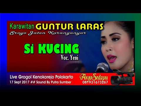 Lirik Lagu SI KUCING Sragenan Karawitan Campursari - AnekaNews.net