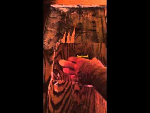 Water Damaged Wood Floor Repair -Duffy Floors- Step 1