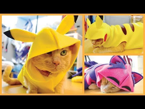 DIY Cat & Dog Clothes - Pikachu, Hoodies & More!