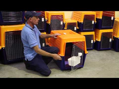 Choosing the correct sized crate for your pet