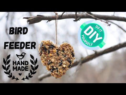 How to make bird feeder - DIY bird feeder - EASY