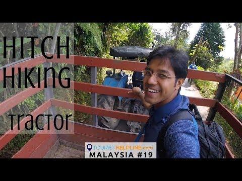 Adventure in Tea Gardens: Cameron Highlands, Munnar of Malaysia