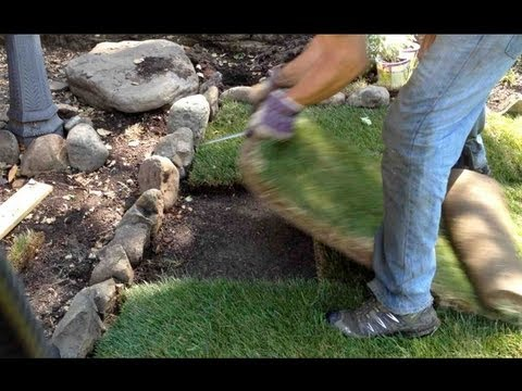 HOW TO INSTALL / REPAIR A SOD PATCH ON LAWN OR GRASS - Perfectly Every Time!!!!!!