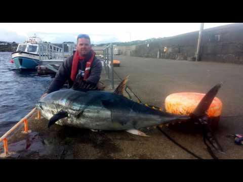 Ep  205 Alastair Wilson, Big Fish Small Boat