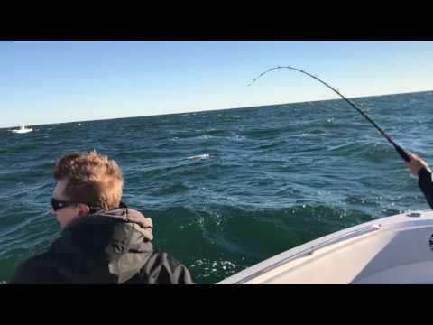 6th Annual NC Trooper's Association King Mackerel Tournament 10/2016- 41.3 pound fish