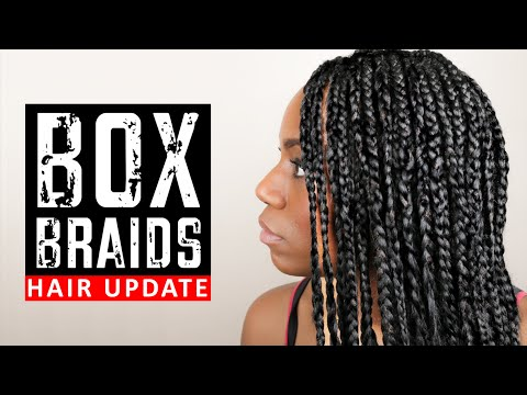 BOX BRAIDS (My NEW Protective Hairstyle on Transitioning Hair) (Hair Update)