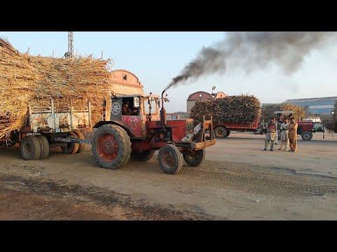 Belarus 510 Tractor Pulling Heavy Sugarcane 8 Wheeler Trolley
