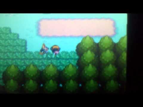 Pokemon Soul Silver Shiny Lucario!!