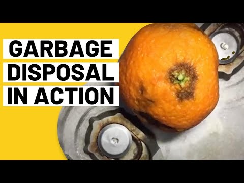 Inside a Garbage Disposal - Close Up!