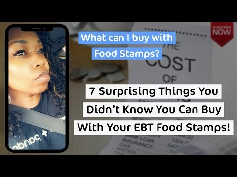 Top 7 Surprising Things You Can Buy With EBT Food Stamps!