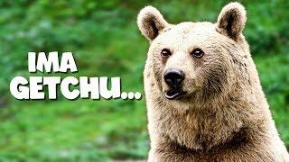 BEARS vs ZOMBIES | Mist Survival