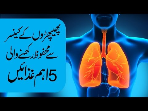 What is Lungs Cancer - Lungs Cancer Symptoms - Lung Cancer Education