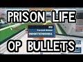 Download  PRISON LIFE OP GUNS|ROBLOX EXPLOITING MP3,3GP,MP4