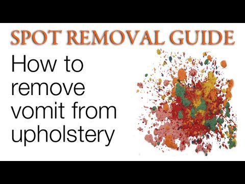 How to Remove Vomit from Upholstery | Spot Removal Guide