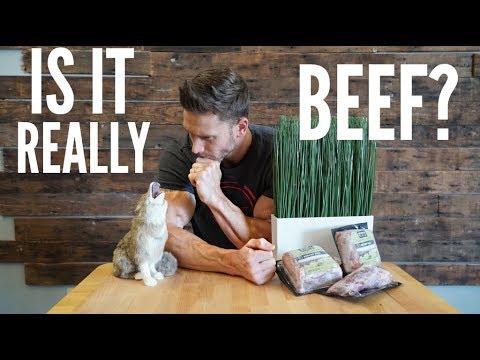 Is Grass Fed Beef a Joke?