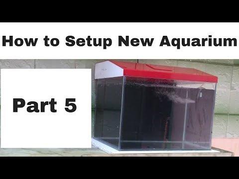 How to Setup new aquarium - part 5