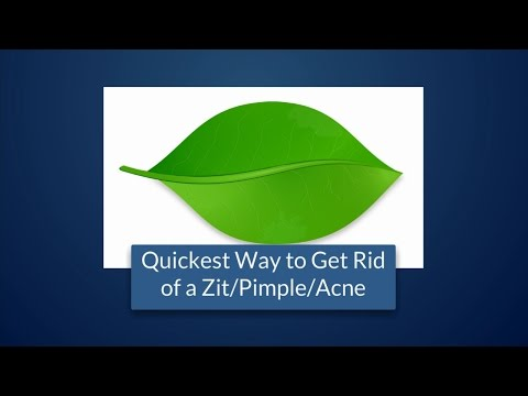 Quickest Way to Get Rid of a Zit/Pimple/Acne At Home Naturally