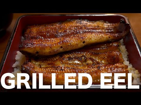 Our Love of Grilled Eel