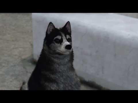 GTA 5 New god races, new animals PS4 & Xbox ONE [NEXT GEN] Screenshots Husky and Westy