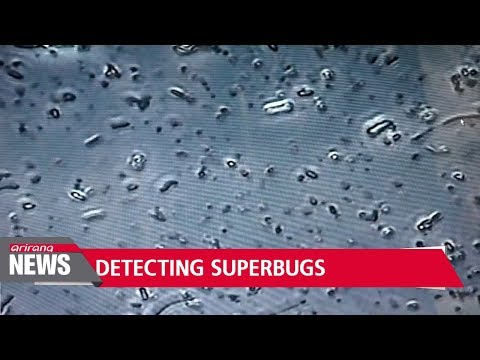 New superbug detecting method developed by Korean researchers