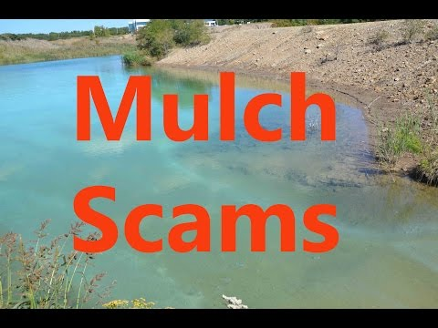 Mulch Problems