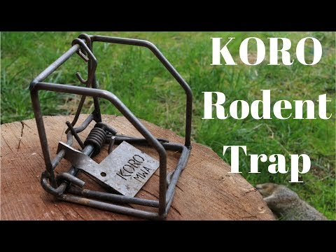The KORO Rodent Snap Trap. Very Powerful - Ground Squirrels and a Smashed Finger
