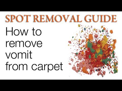 How to Clean Vomit from Carpet | Spot Removal Guide