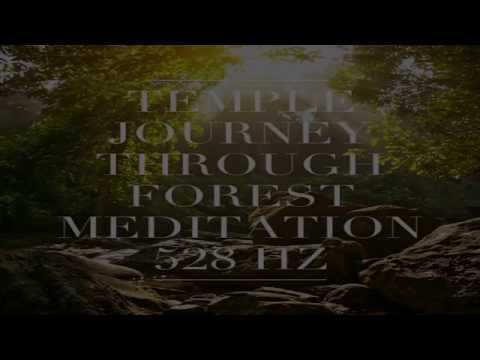 TEMPLE JOURNEY THROUGH THE FOREST MEDITATION - 528 hz