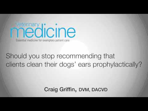 Should you stop recommending that clients clean their dogs' ears prophylactically?