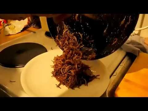 Edible Insects for Dinner