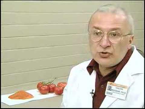 Processed Tomatoes Reduce Animal Prostate Cancer