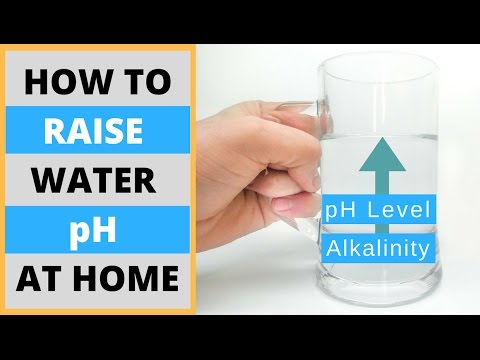 How to Make Alkaline Water At Home | DIY Raise Water pH Level Naturally and Without Machines