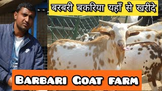 Goat farming in Bihar | This breed are suitable for Bihar's