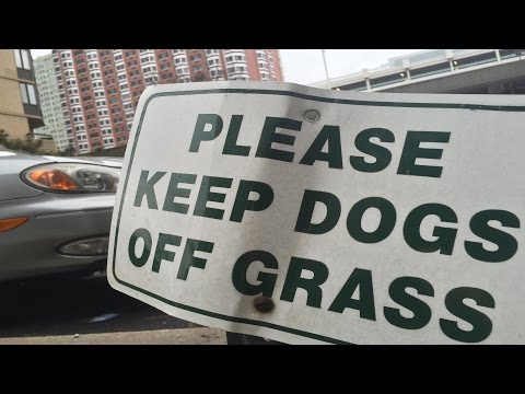 Keep Dogs Off WHAT Grass 2? by OxyMoronGuyDotCom