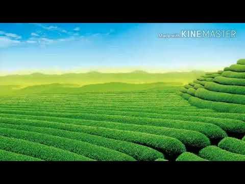 Xxx Mp4 2018 Nagpuri Jesus Song 3gp Sex