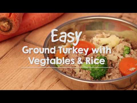 Homemade Dog Food for Allergies: Turkey, Vegetable and Rice Meal