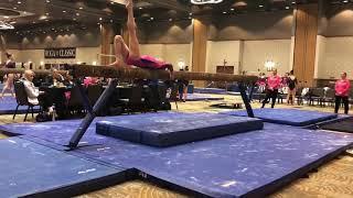 Ava Wellmeier Level 10 Gymnast Region 5 Vault Champion & State Bar Champ (class Of 2024)