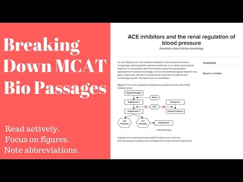 MCAT Biology Passage Breakdown