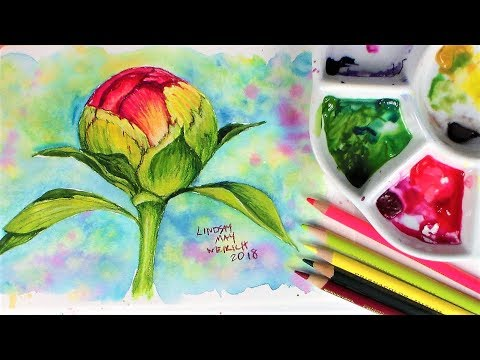 Top 10 Tips for Using Cheap Watercolor Supplies! (PLUS 5 reasons cheap watercolors are great!)