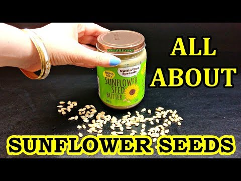 Sunflower Seeds for Weight Loss   Sunflower Seed Benefits and Side Effects